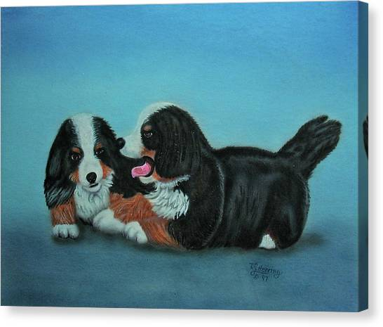 Bernese Mountain Puppies Canvas Print