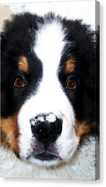 Bernese Mountain Dogs Canvas Print - Bernese Mountain Dog - Baby It's Cold Outside by Sharon Cummings