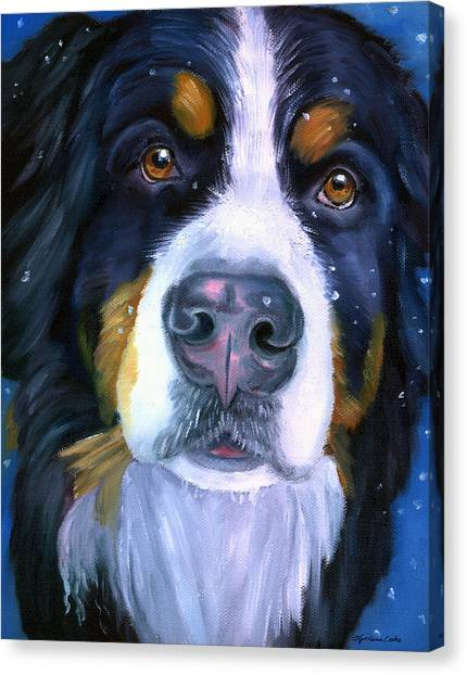 Bernese Mountain Dogs Canvas Print - Bernese Mountain Dog In Snowfall by Lyn Cook