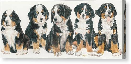 Canvas Print - Bernese Mountain Dog Puppies by Barbara Keith
