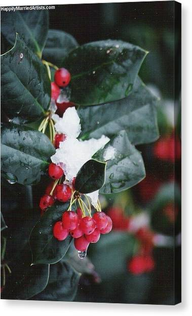 Berries In The Snow Canvas Print