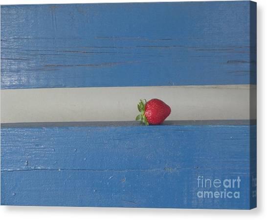 Berry Blues Canvas Print