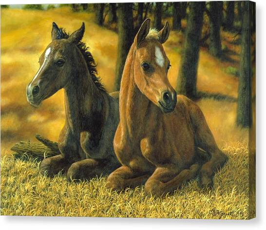 Bay Horse Canvas Print - Best Friends by Crista Forest