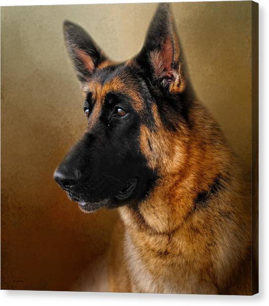 Best In Show - German Shepherd Canvas Print