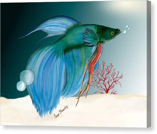 Beta Fish Canvas Print