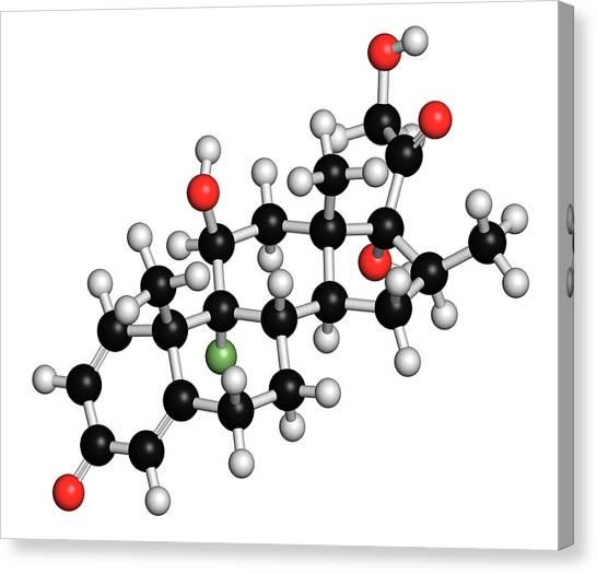 Betamethasone Steroid Molecule Canvas Print by Molekuul