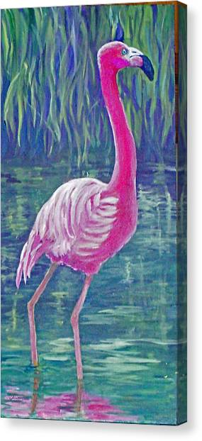 Beta's Flamingo Canvas Print