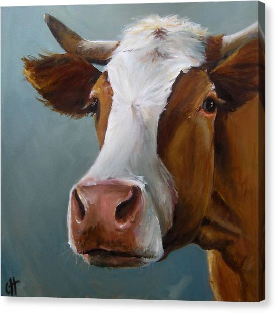 Betsy The Cow Canvas Print by Cari Humphry
