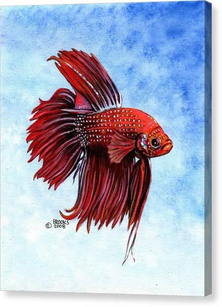 Betta-big Red Canvas Print