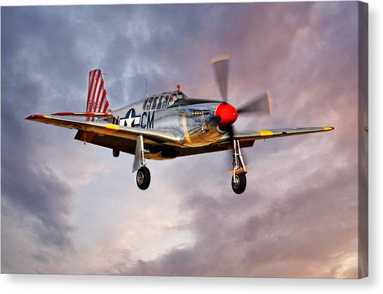 Betty Jane Canvas Print
