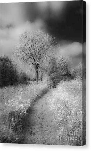 Between Black And White-23 Canvas Print