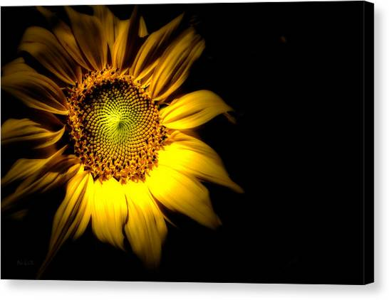 Metaphysical Canvas Print - Between Here And There by Bob Orsillo