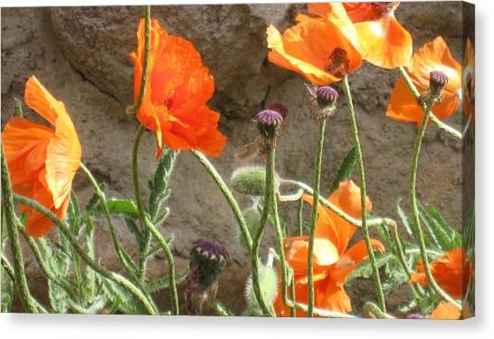 Beulah Orange Canvas Print