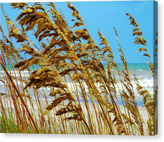 Beyond The Sea Oats Lies Eternity Canvas Print by Lorraine Heath