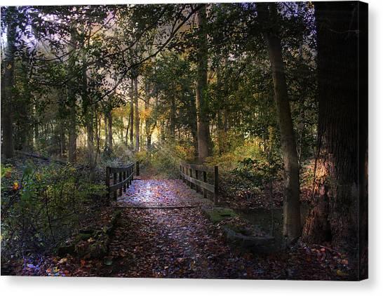Beyond The Wooden Bridge Canvas Print