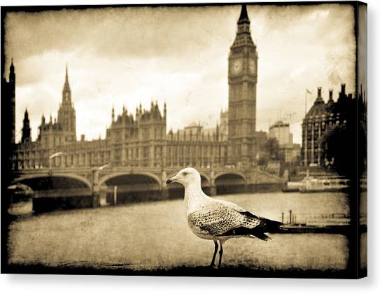 Big Ben And The Seagull Canvas Print