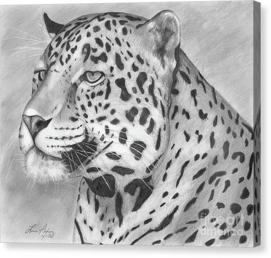 Big Cat Canvas Print