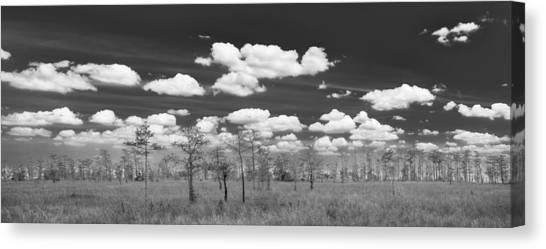 Everglades Canvas Print - Big Cypress Prairie by Jon Glaser