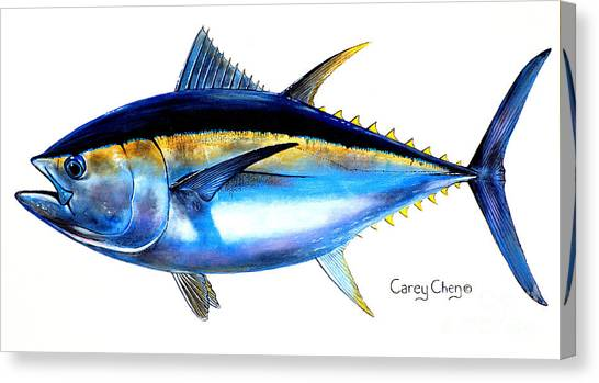 Fish Canvas Print - Big Eye Tuna by Carey Chen