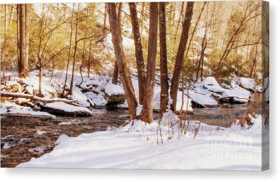 Big Gunpowder Falls River 1 Canvas Print
