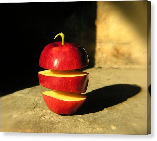 Big Mac-apple Diet Canvas Print