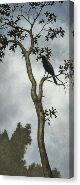 Crows Canvas Print - Big Sur by David Palmer