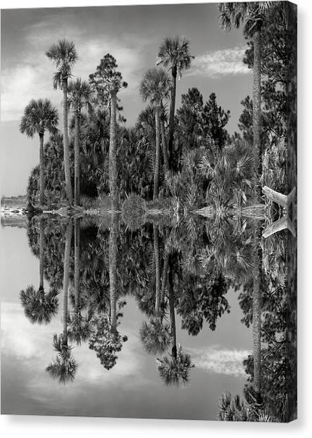 Big Talbot Reflects Canvas Print