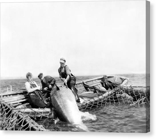Nova Scotia Canvas Print - Big Tuna Fishermen by Underwood Archives