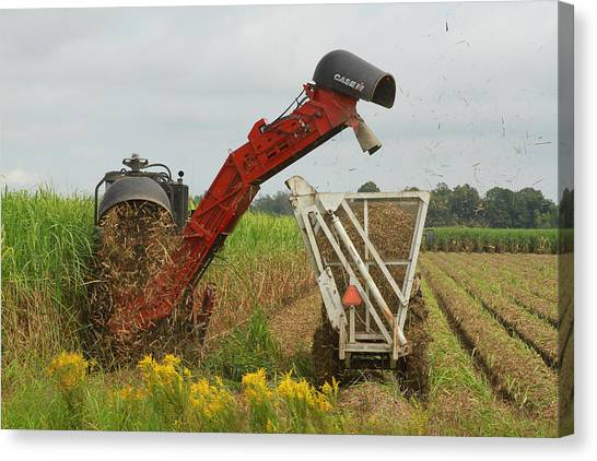 Billet Sugarcane Harvester Canvas Print