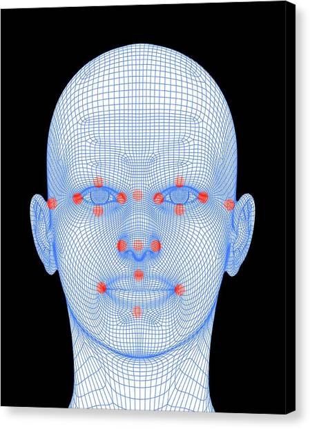 Biometrics Canvas Print - Biometric Facial Map by Alfred Pasieka