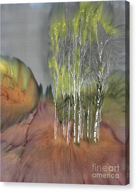 Birch Grove 1 Canvas Print