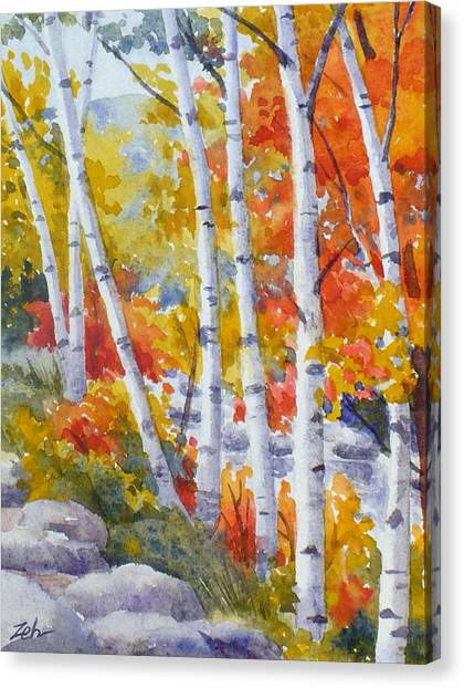 Birches Along The River Canvas Print
