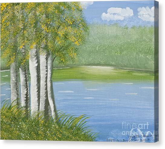 Birches By The Lake Canvas Print