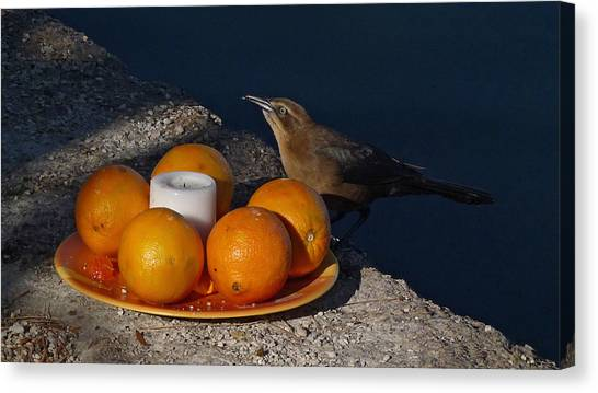 Bird Banquet Canvas Print