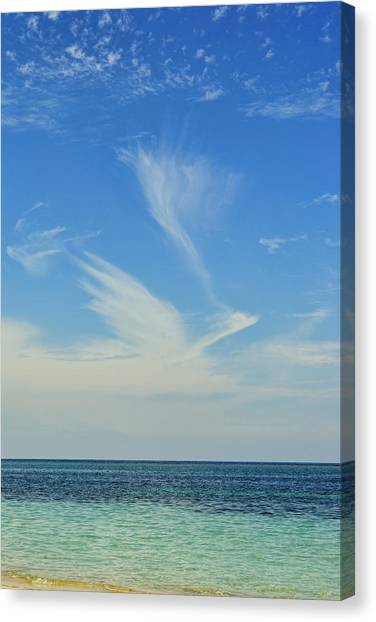 Bird Cloud Canvas Print