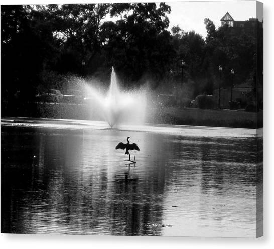 Bird Imitates Fountain Canvas Print