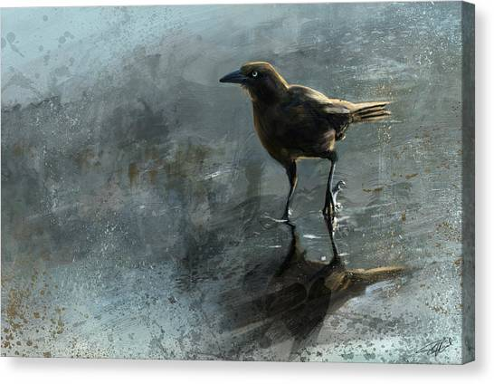 Bird In A Puddle Canvas Print