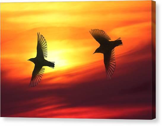 Bird Lovers Canvas Print