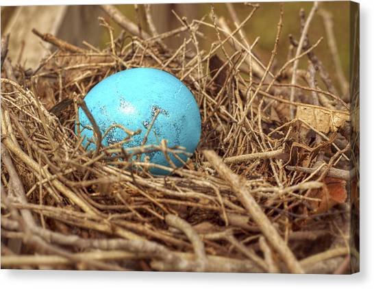 Easter Baskets Canvas Print - Bird Nest Easter Egg Basket by Jason Politte