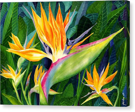 Tropical Birds Canvas Print - Bird-of-paradise by Janis Grau