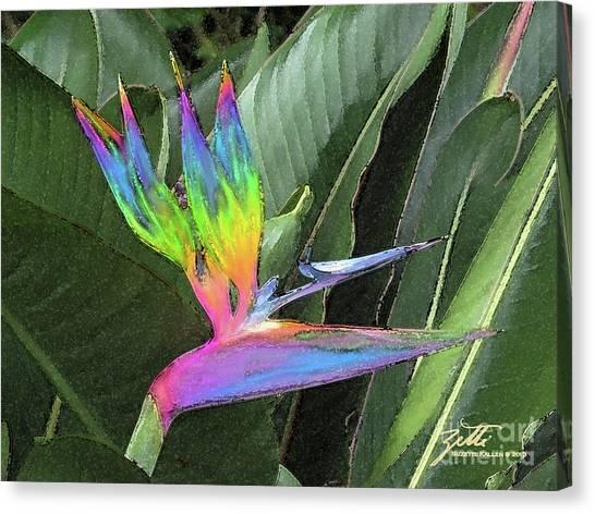Bird Ow  Paradise Canvas Print