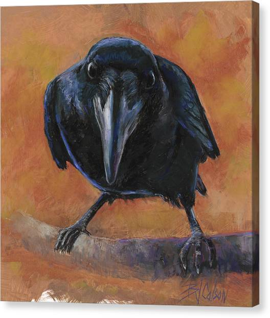 Blackbirds Canvas Print - Bird  Watching by Billie Colson