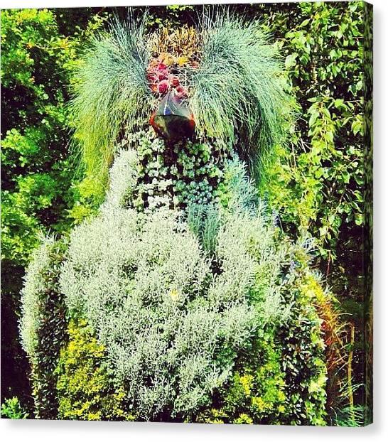 Imaginative Canvas Print - #bird#big#plants #bush#green by Vicky Combs