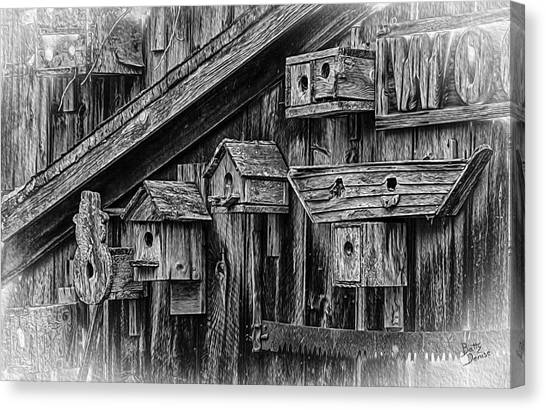 Birdhouse Collection Canvas Print