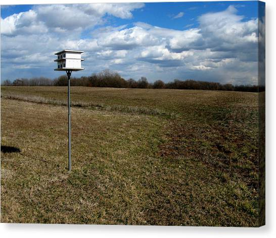 Birdhouse In Field Canvas Print