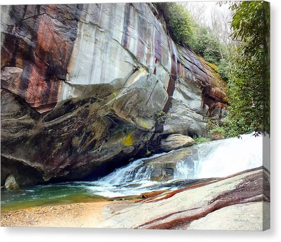 Birdrock Waterfall In Spring Canvas Print