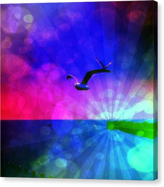 Edit Canvas Print - Birds by Chris Drake