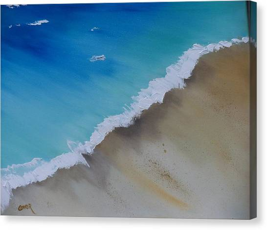 Birds Eye View Canvas Print