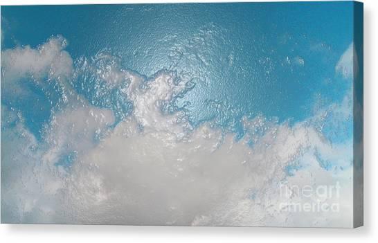 Birds Eye View Canvas Print by Drew Shourd