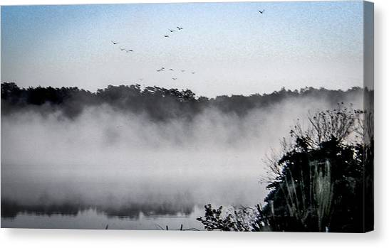 Birds Fly Above The Steamy Lake Canvas Print